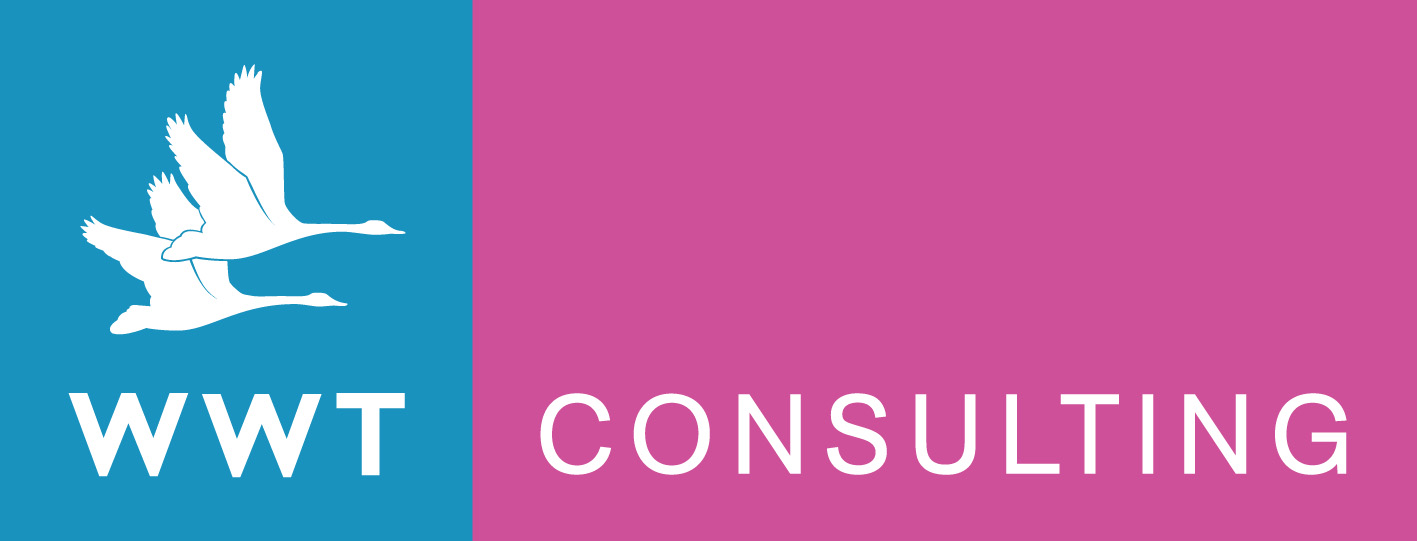 WWT Consulting logo